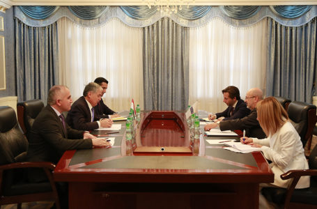 Meeting of the Minister of Foreign Affairs of Tajikistan with the OSCE High Commissioner on National Minorities