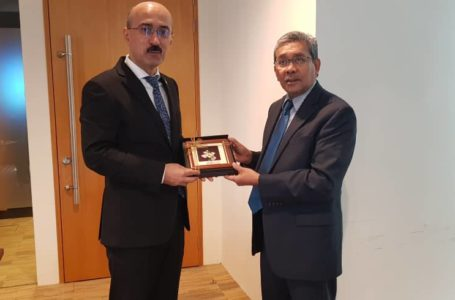 Meeting of the Ambassador with the Deputy Chief Executive Officer of the Malaysian Investment Development Authority