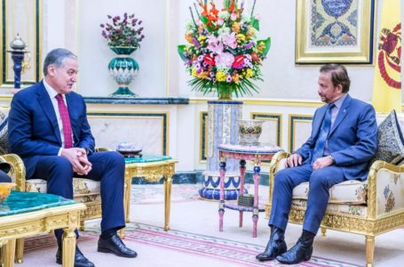 Meeting of the Minister of Foreign Affairs of Tajikistan with the Sultan of Brunei Darussalam
