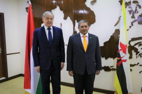 Meeting of the Ministers of Foreign Affairs of Tajikistan and Brunei