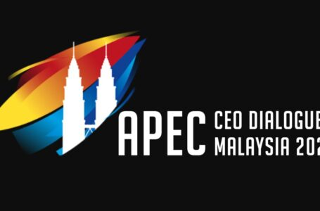 Participation of the Ambassador in the APEC CEO Dialogues 2020