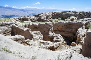SCIENTIFIC REFERENCE ON ANCIENT AGRICULTURAL SETTLEMENT SARAZM (MID-IV - III MILLENNIUM BC)